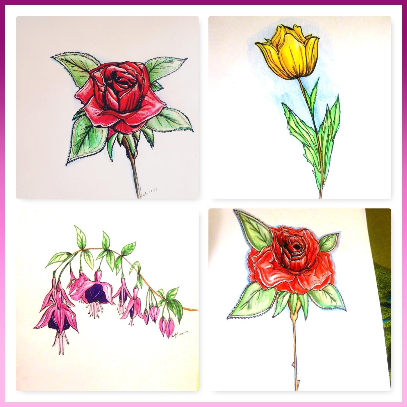 my flower collage 27.09.17.jpg