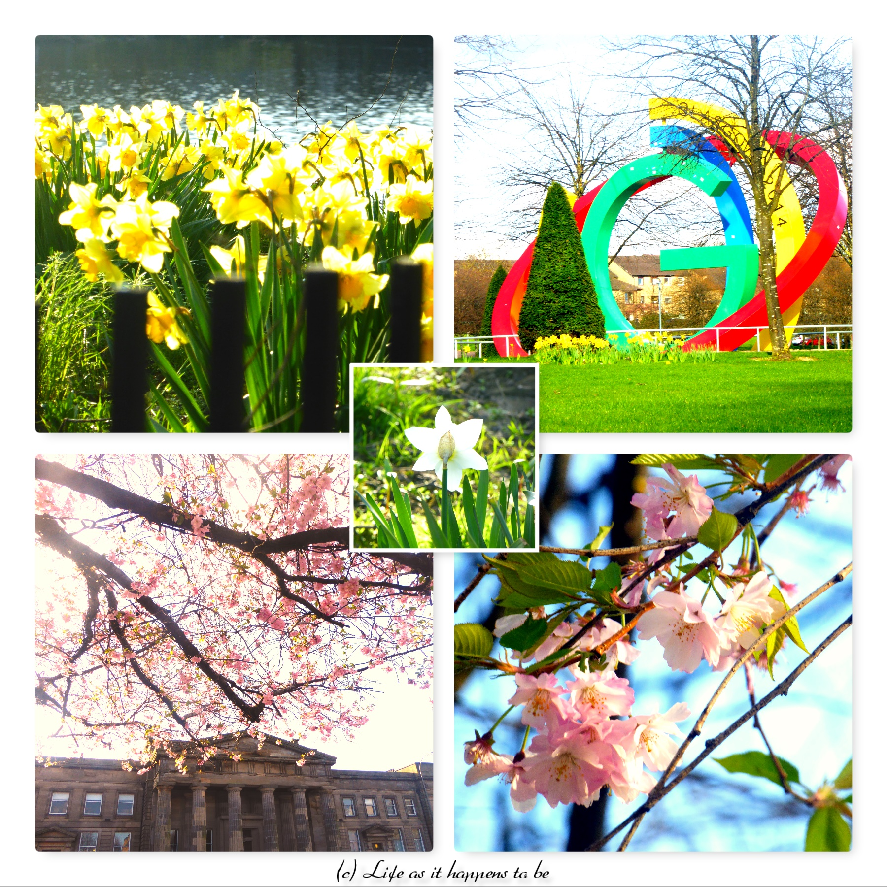 spring in Glasgow 20.04.18 blog collage.jpg