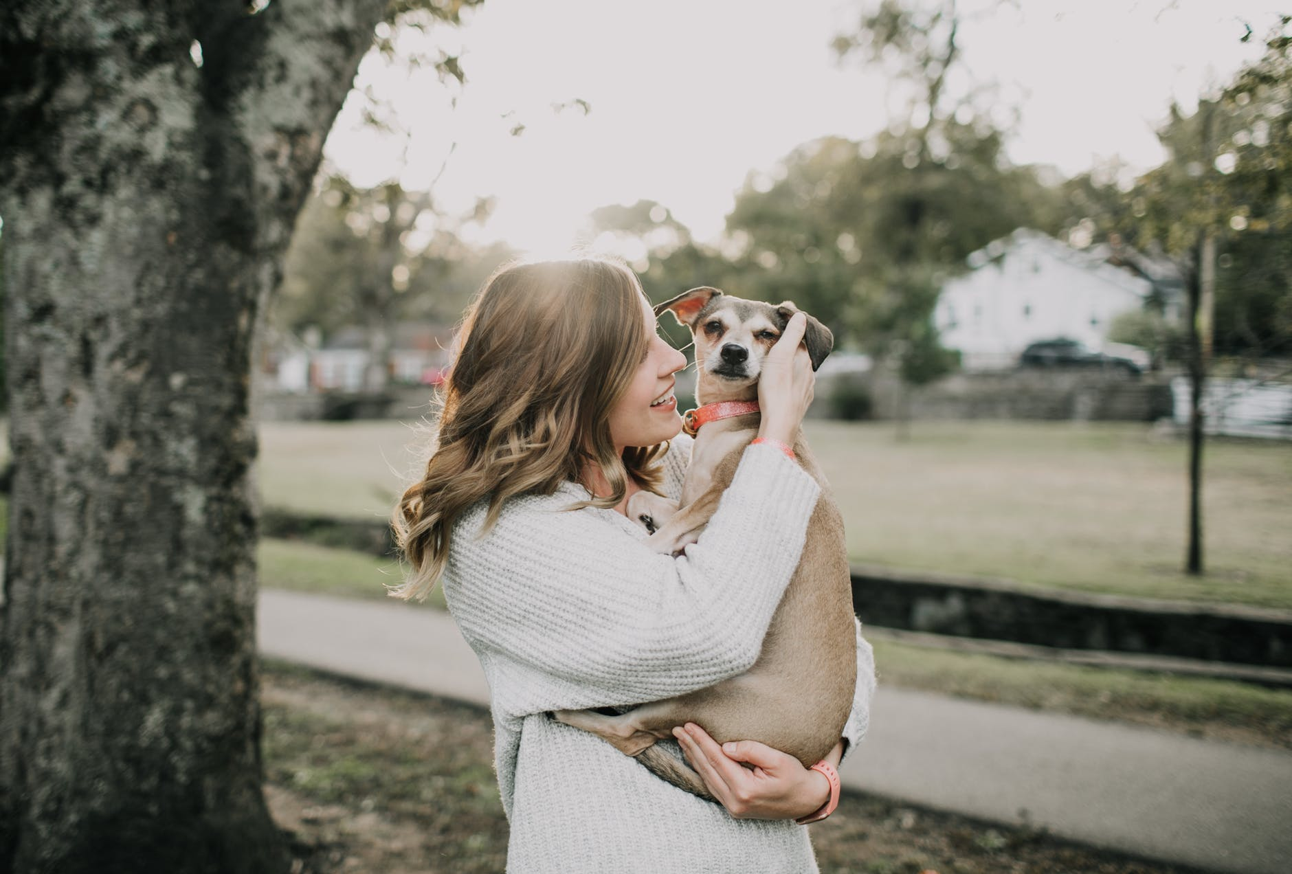 smiling woman carrying dog near tree