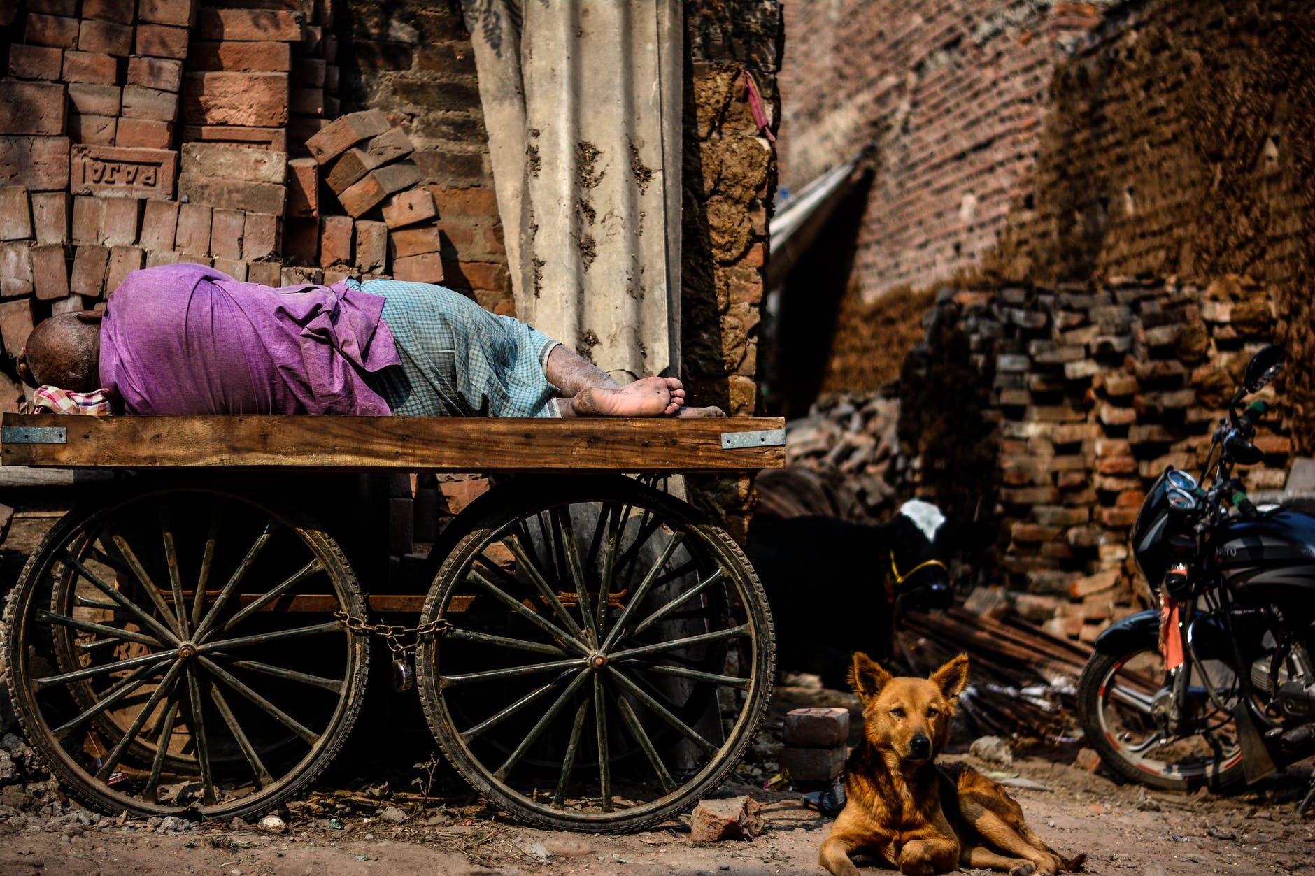 person lying on cart